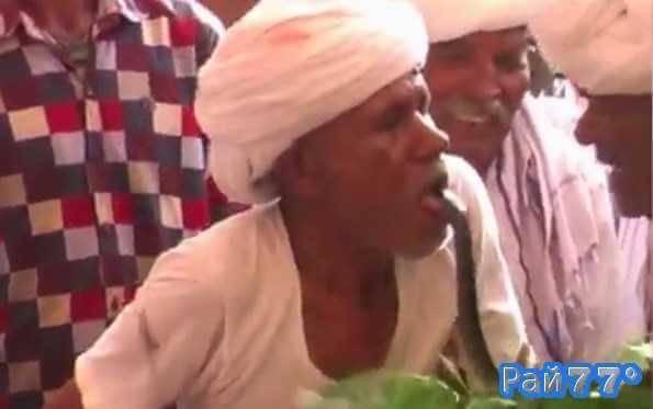 Индиец высовывает язык перед коброй