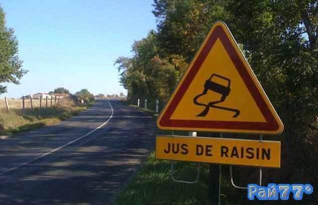 Необычные дорожные знаки в связи с уборкой винограда появились на французских магистралях