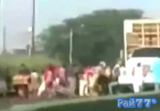 Венесуэльцы ограбили грузовик с живыми цыплятами