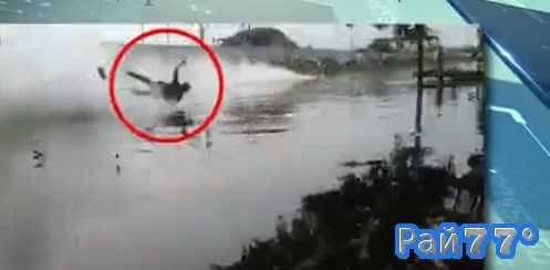 Таец совершил полёт, находясь во власти стихии