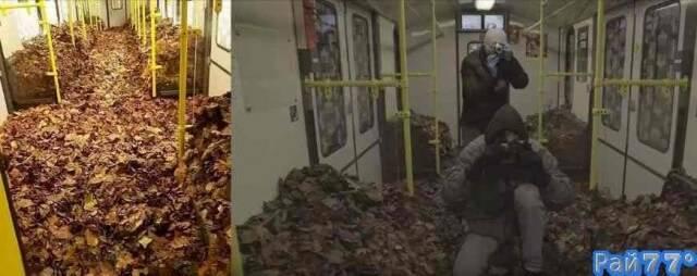 Уличные художники украсили вагоны электричек листвой