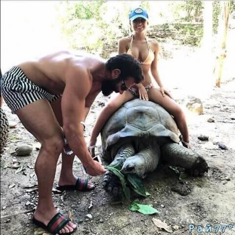 Американский плейбой вызвал волну возмущения в интернете, опубликовав фото полуобнажённой девицы, сидящей на 100-летней черепахе. (Видео)