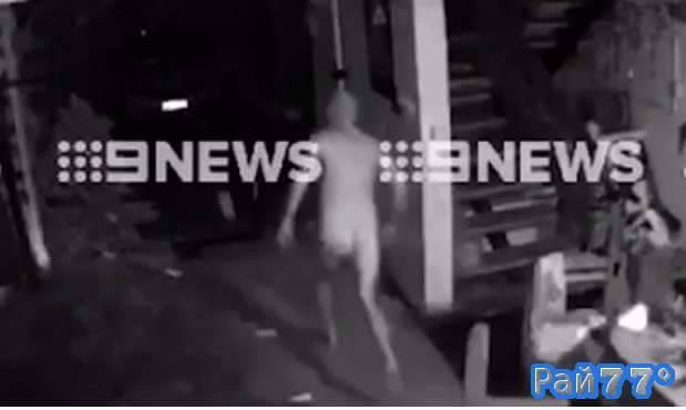 Голый домовладелец разогнал грабителей в своём жилище, в Австралии