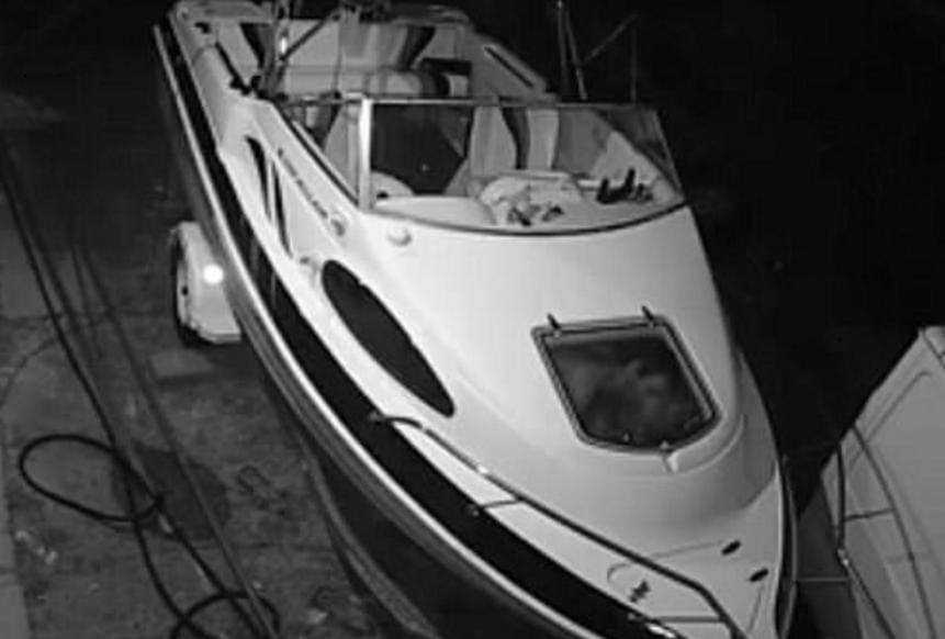 Австралийские воришки устроили оргию на ограбленном ими катере. (Видео)
