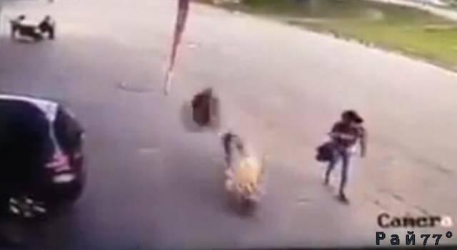 Шокирующий момент прямого попадания автомобильной покрышки в голову пешехода попал на видеокамеру.