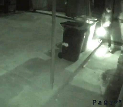 Австралиец совершил неудачный поджог торгового центра в Аделаиде. (Видео)