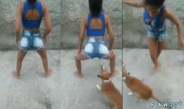 Весёлый танец молодой девушки бесцеремонно прервал наглый пёс. (Видео)