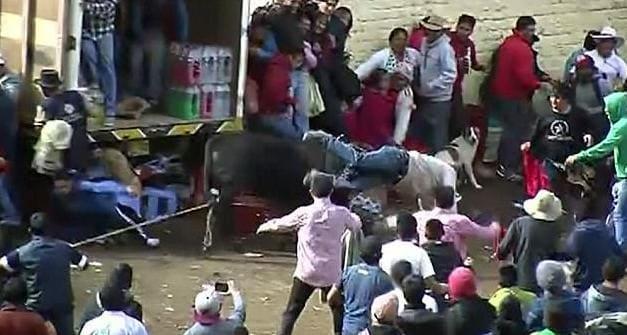 12 человек получили ранения во время забега с быками в Перу. (Видео)