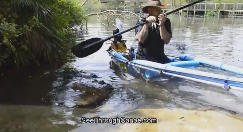 Американский бизнесмен проверил на прочность байдарку, проплыв на ней по озеру с аллигаторами. (Видео)