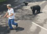 Медведица предостерегла туриста, дразнившего её детёнышей ▶