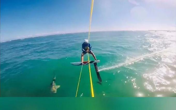 Авария в море: кайтсёрфер врезался в зазевавшуюся акулу в Доминикане (Видео)
