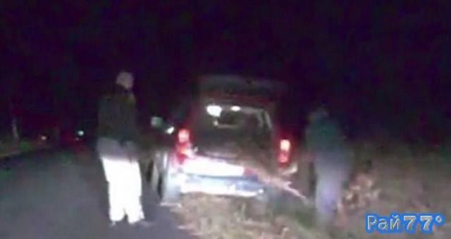 От американского автовладельца сбежал «мёртвый» олень