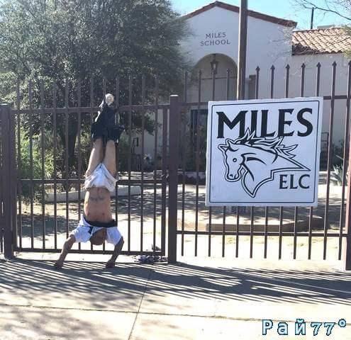 Неудачливый воришка, зацепившись штанами за забор, повис вниз головой в США.