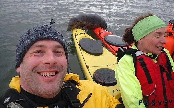 Шотландские каякеры привлекли внимание любопытного тюленя в заливе Ферт-оф-Форт. (Видео)