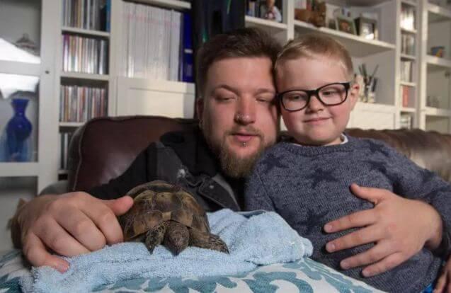 Сбежавшая черепаха спустя 1.5 года была найдена в 10 километрах от места побега